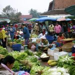 Vegetable Prices Decrease in Vientiane Capital
