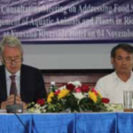 Gov't Promotes Small-scale Rice, Fish Production