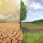 Ministry, Partners Seek Ways to Mitigate Climate Change Impacts on the Health Sector