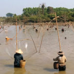 Fish Experts to Confer on Enhanced Regional Fisheries Productivity